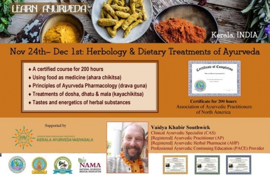 8-day 200 hr workshop: Herbology and Dietary Treatments of Ayurveda